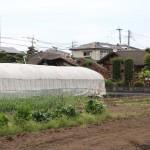 fukutomi_2